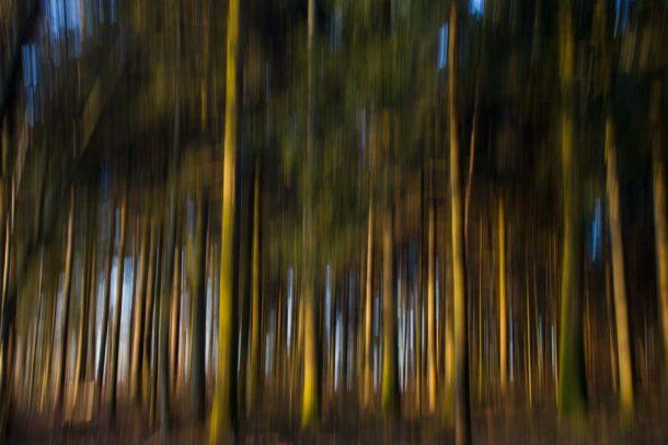 File d'arbre
